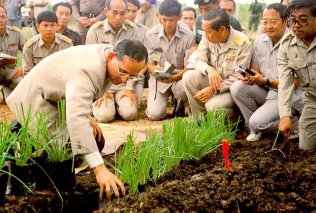 โครงการพระราชดำริเกี่ยวกับดิน 1